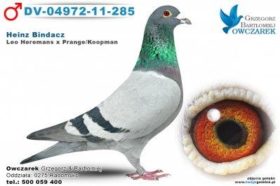 DV-04972-11-285