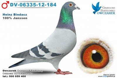 DV-06335-12-184