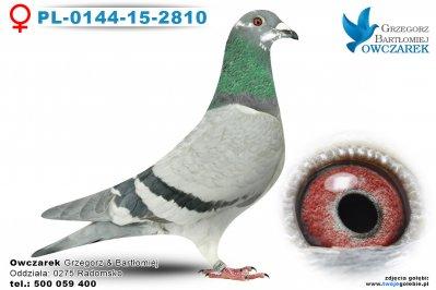 PL-0144-15-2810