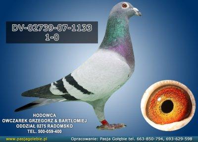 DV-02739-07-1133
