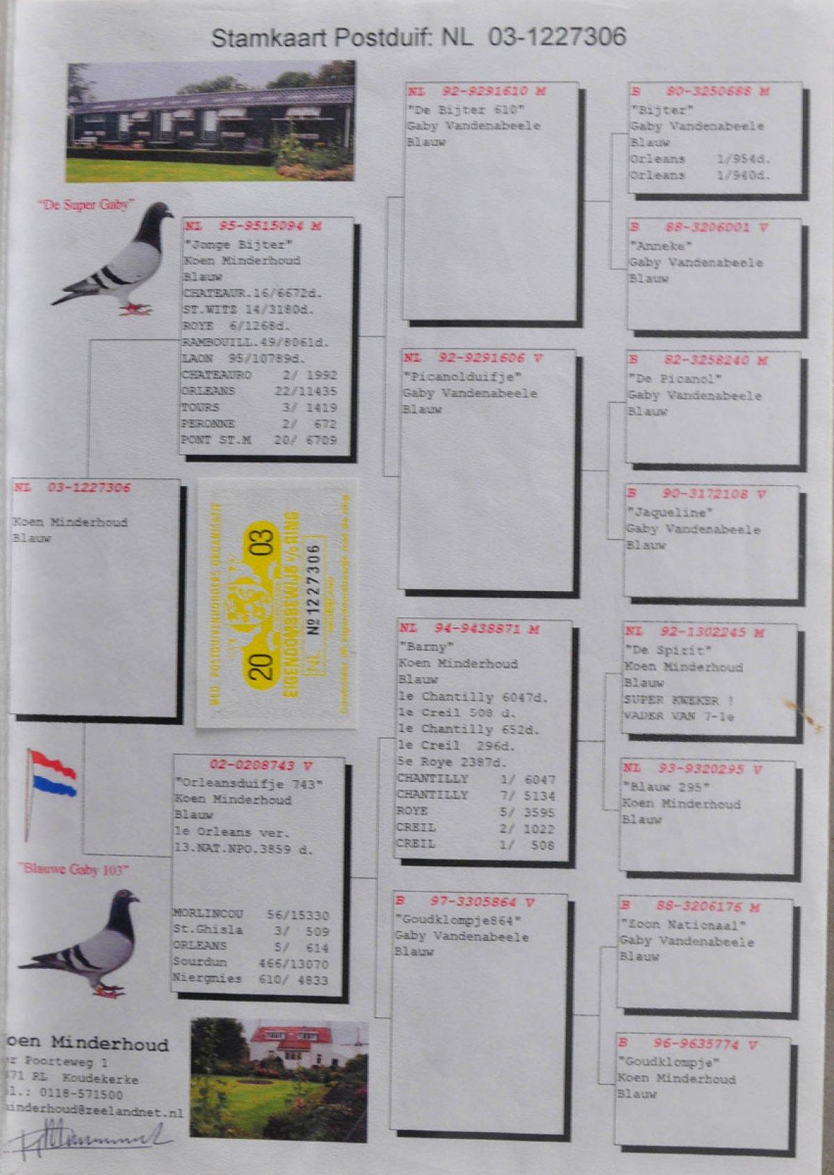 nl-03-1227306-rod