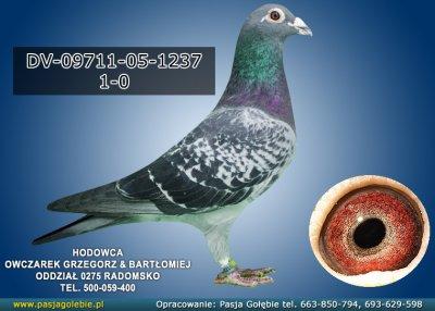 DV-09711-05-1237