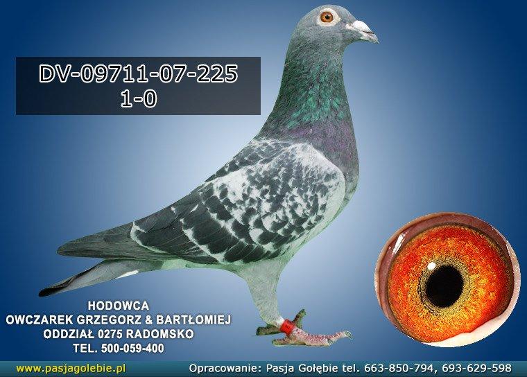 DV-09711-07-225
