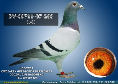 DV-09711-07-280
