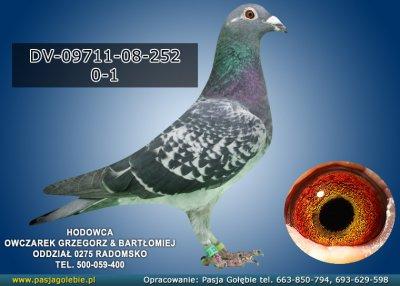 DV-09711-08-252