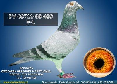 DV-09711-08-439
