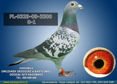 PL-0329-09-3300