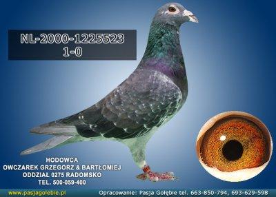 NL-2000-1225523
