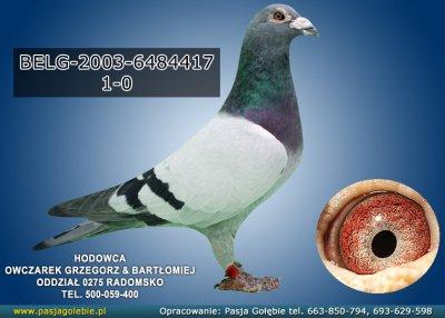 BELG-2003-6484417