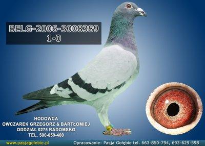 BELG-2006-3008389