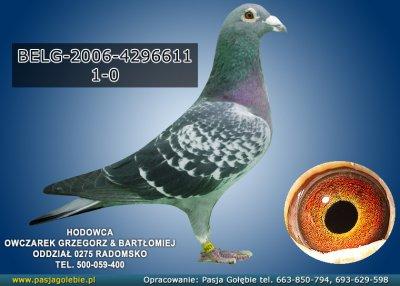 BELG-2006-4296611
