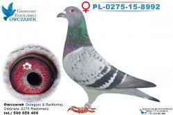 PL-0275-15-8992-0