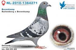 NL-2010-1364271-golab