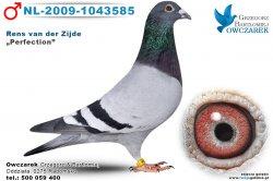 nl-2009-1043585-golab