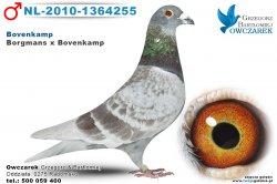 NL-2010-1364255-golab