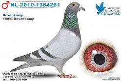 NL-2010-1364261-golab