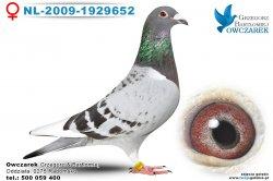 NL-2009-1929652