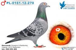 PL-0161-12-270