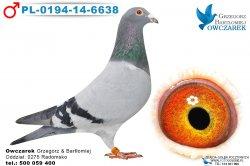 PL-0194-14-6638