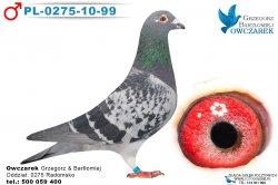 PL-0275-10-99