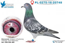 PL-0275-16-20748-0