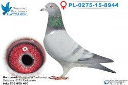 PL-0275-15-8944-0