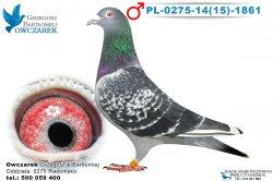 PL-0275-1415-1861-1