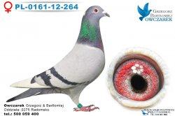 PL-0161-12-264-0