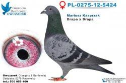 PL-0275-12-5424-0
