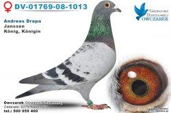 dv-01769-08-1013-golab