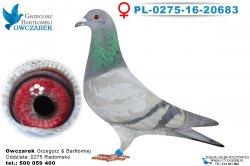 PL-0275-16-20683