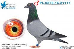PL-0275-16-21111-1