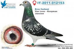 IT-2011-012153-golab