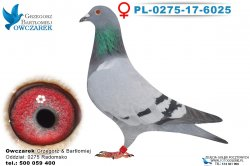 PL-0275-17-6025