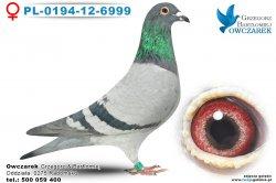 PL-0194-12-6999
