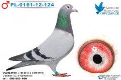 PL-0161-12-124