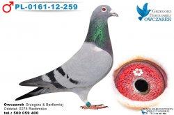 PL-0161-12-259