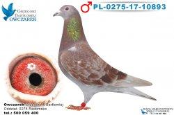 PL-0275-17-10893